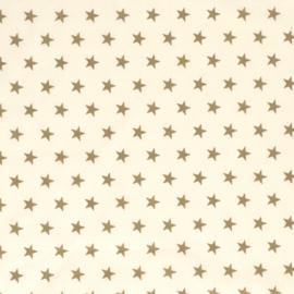 kerst katoentjes art 12704/051
