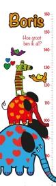 Groeimeter Olifant