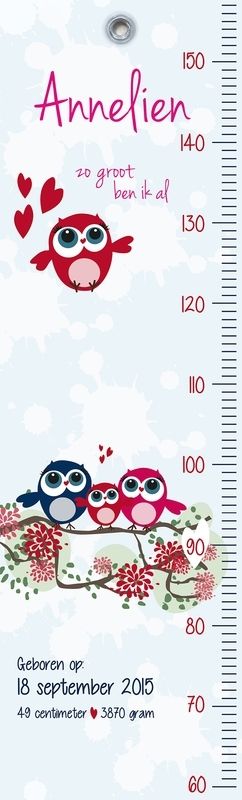 Geboortekaart Groeimeter