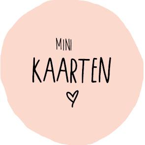 minikaart-roze.jpg