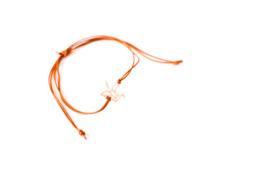 Armbandje Kraanvogel Rose goud/Zilver
