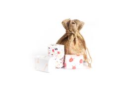 De Zak van Sinterklaas + 3 cadeautjes (Limited Edition)