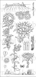 Sunflowers / Zonnebloemen - clear stamps