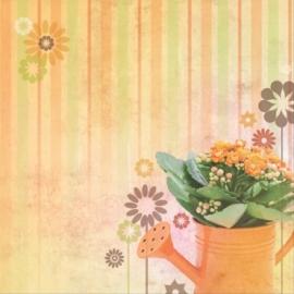 Plantjes water geven gieter papier 30.5 x 30.5 cm