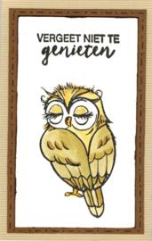 Owls / Uil - stempelset