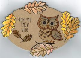 Ornate Owl / Uil clearstempelset