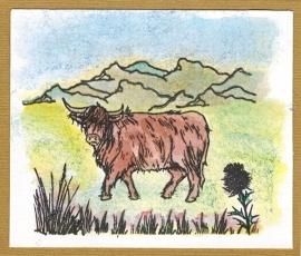 Highland cattle CS120D clear stempelset van Hobby Art LTD