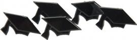 Geslaagd / graduation hat - 12 stuks hobby splitpennen