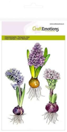Hyacinthen - bloemen - A6 stempels
