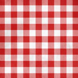 Spreid je Picnic kleedje op het gras - dubbelzijdig 12 x 12 inch