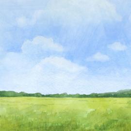 Horse / paard - watercolor - 30.5x30.5 cm - scrapbookpapier
