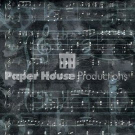 muziek scrapbooking notenbalk papier 30.5 x 30.5 cm