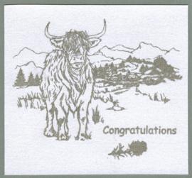 Highland cattle / Schotse Hooglanders - transparante stempels