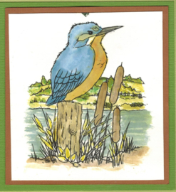 Kingfishers - clearstamps - Hobby art ltd