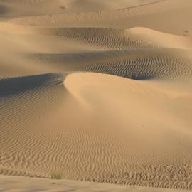 California 16 snap shots / Death Valley - dubbelzijdig papier 30.5 x 30.5 cm