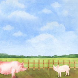 Varkens /  Pigs - watercolor - 30.5x30.5 cm - scrapbookpapier