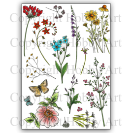 Wild Meadow  clear stempels A5