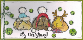 Kerst stempels - Christmas Squeakings / Cavia's - clear stamps