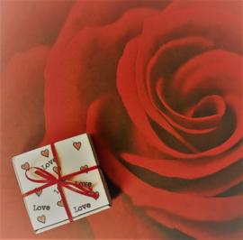 Mini-pizzadoosjes  - karton - 9 x 9 x 2 cm, wit, 20 stuks