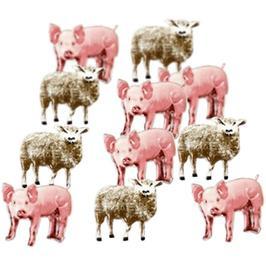 Varkens-schapen -  splitpen decoratie - zakje 12 stuks