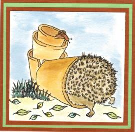 Hedgehogs / Egeltjes stempels