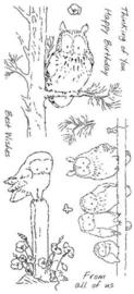Woodland Owls  clear dieren stempels