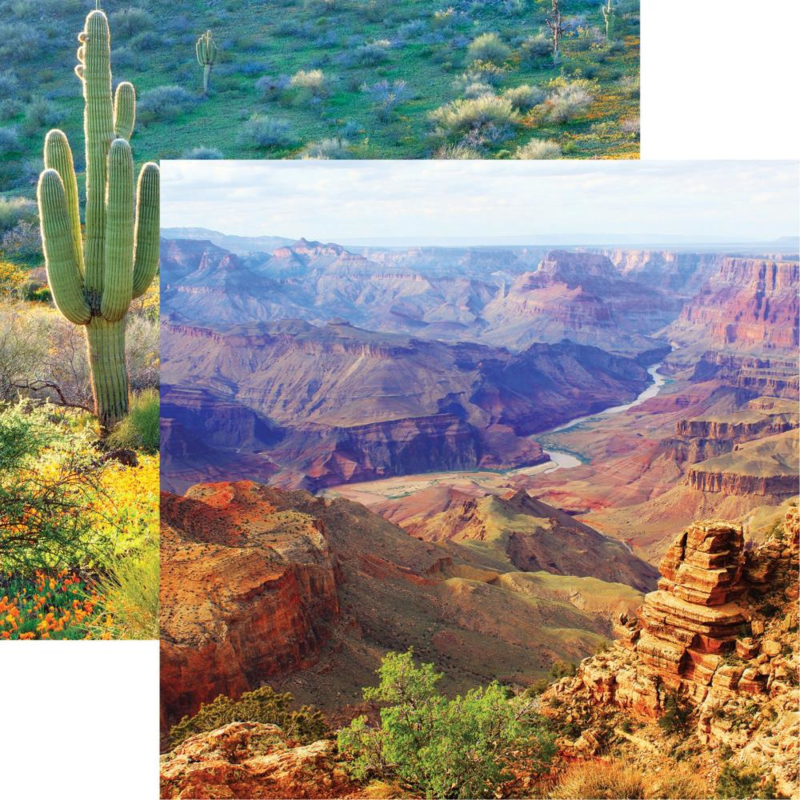 Grand Canyon NP - Cactussen - dubbelzijdig scrappapier 30.5 x 30.5 cm