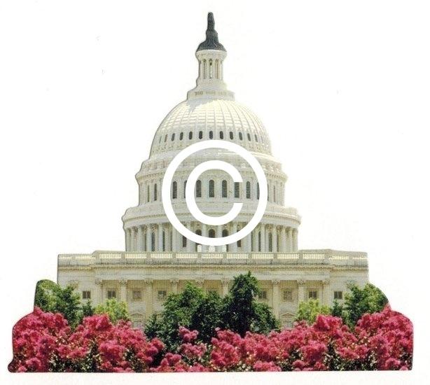 Capitool Washington DC      - stans decoratie -         10x9