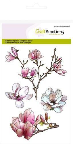 Magnolia - bloemen - A6