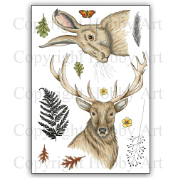 Stag & Hare - A5 clear stempel set 15 x 20 cm