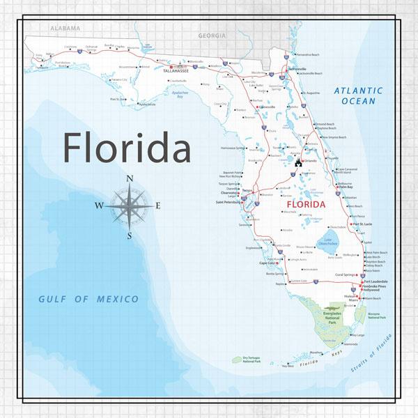 Florida - Adventure Map - scrapbooking papier 12x12 inch