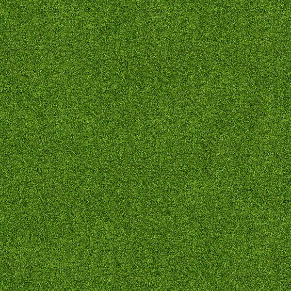 Grasveld papier met picnic kleed op achterzijde - 30.5 x 30.5 cm