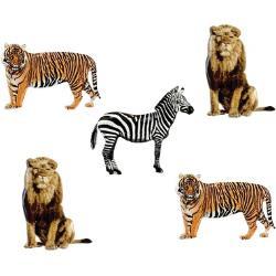 safari splitpennen
