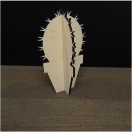 Houten cactus: Denmoza