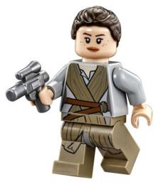 1 figuur Rey