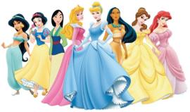 Disney Prinsessen - complete lijst