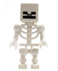 1 figuur Skeleton D