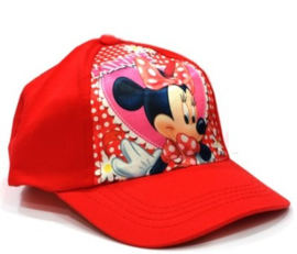 1 Pet Minnie Mouse 52-54cm