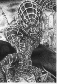 Spiderman - A4