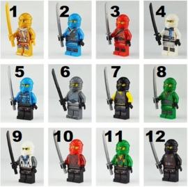 1 poppetje Ninja H - naar keuze