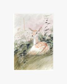 Jong Hert in het bos