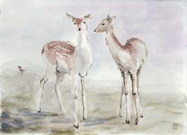Twee Herten