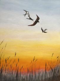 Zwaluwen door de lucht.