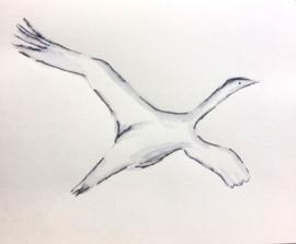 Overvliegende vogel Joke