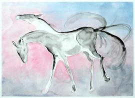 Wild paard.
