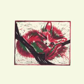 Rode Panda (magenta/groen)