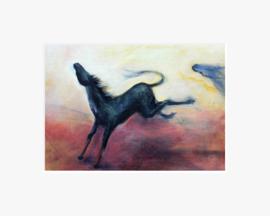 Paardesprong
