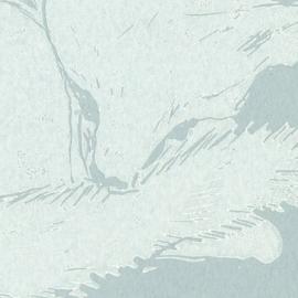 Sneeuwvosje
