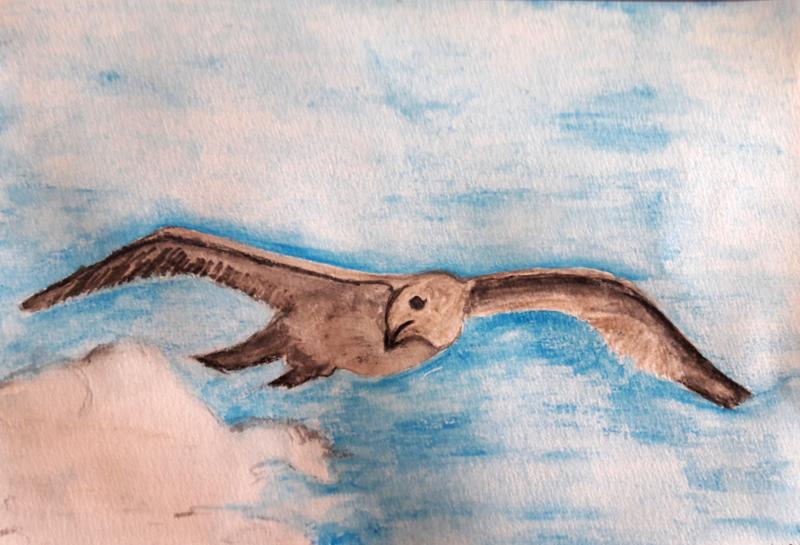 Vogel in de vlucht Lous