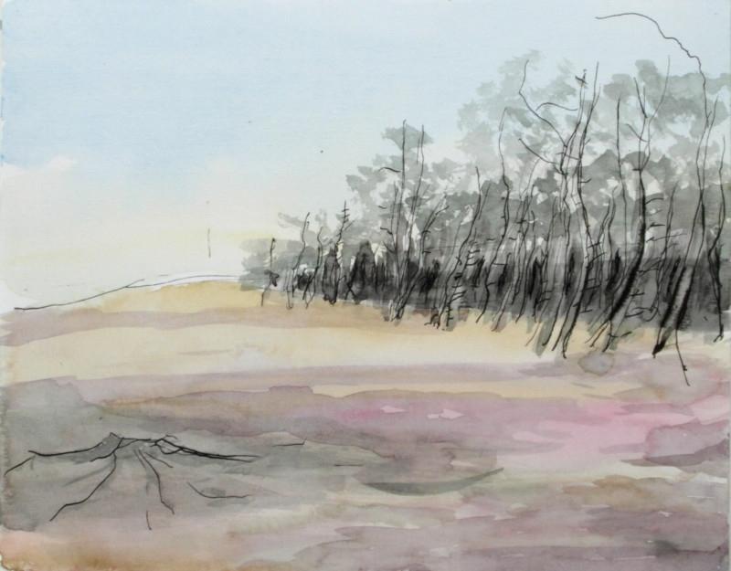 Heide bij Bussum